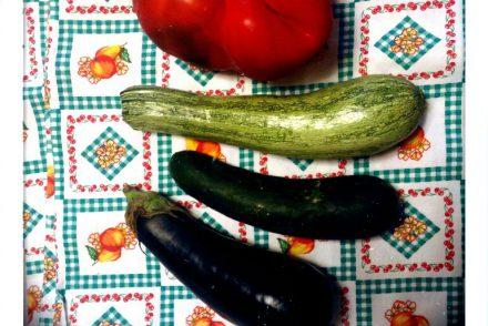 Gemüse Synonym Penis Gurke Zucchino Augergine